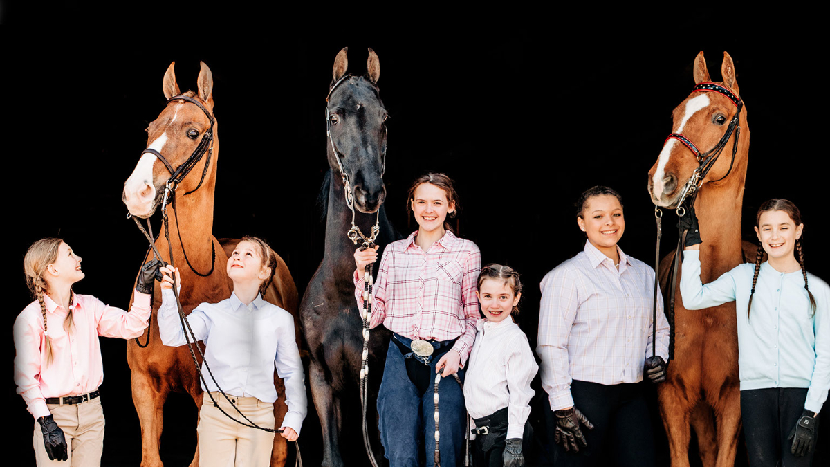 Start Your Saddlebred Story Today!